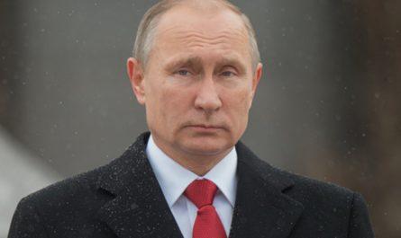 Биография Путина Владимира Владимировича: детские годы и образование. Карьера и родители.