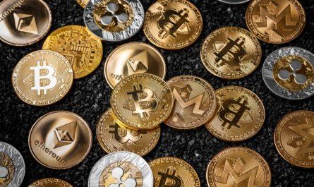 Какие криптовалюты имеют перспективы развития в 2021-2022 году?